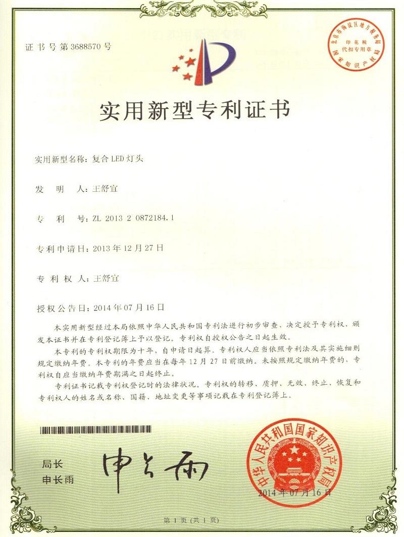 实用新型专利(1)